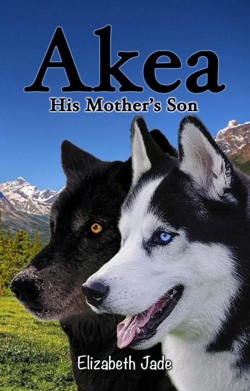 Akea 2 cover